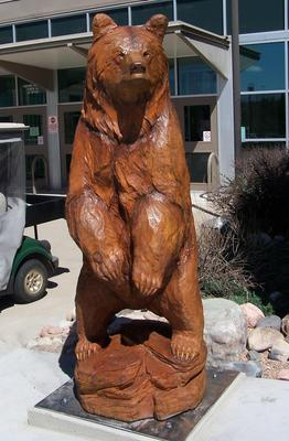 """ThunderRidge Grizzly"" -"